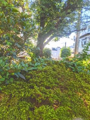 KONOSUKE(コウノスケ) 朝は景色がキレイ