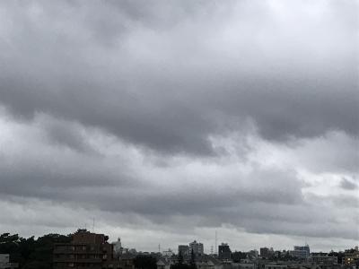 SHINJI(シンジ) 秋雨