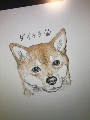 HIROAKI(ヒロアキ) 頂いたダイキチ