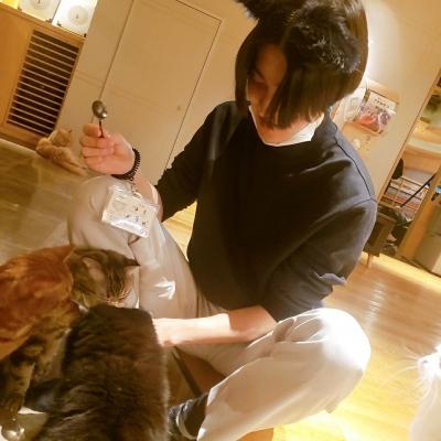 LEO(レオ) 猫カフェ