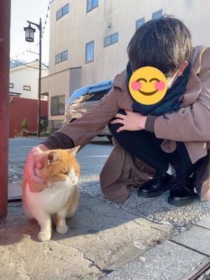 AKANE(アカネ) 猫