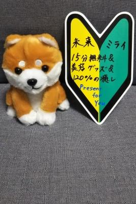 MIRAI(ミライ) 本日23時から(^-^)