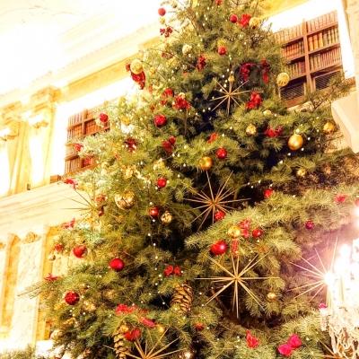 KAZUHO(カズホ) ★クリスマス★