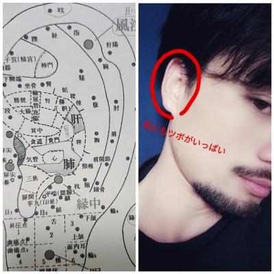 HISASHI(ヒサシ) 耳