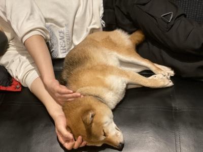 MITSURU(ミツル) 女の子と寝てる所を撮られてしまいました...