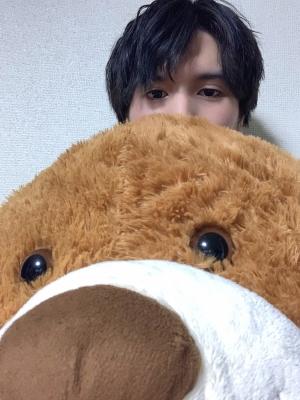 FUGA(フウガ) 巨大クマ