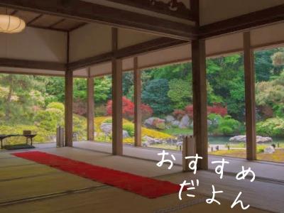 DAIKI(ダイキ) 【京都行きたし