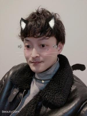 KONOSUKE(コウノスケ) 猫