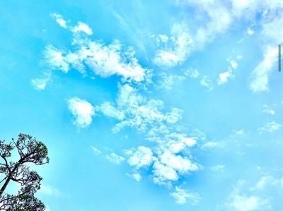 TAKUMI(タクミ) いい天気