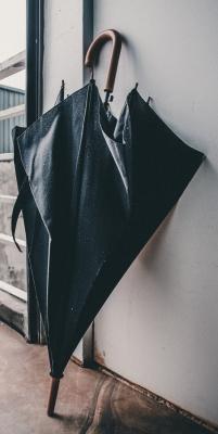 KISARAGI(キサラギ) 傘を忘れずに。
