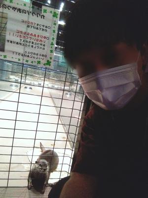 ATSUYA(アツヤ) 室内動物園らしい