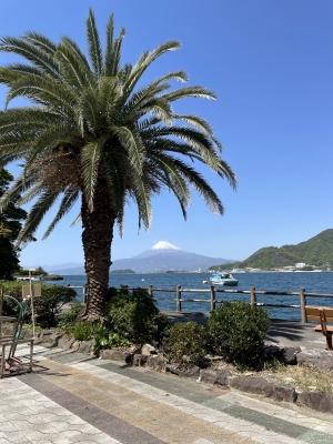 SHINJI(シンジ) 海が好き