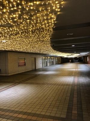 NAO(ナオ) 神奈川観光①