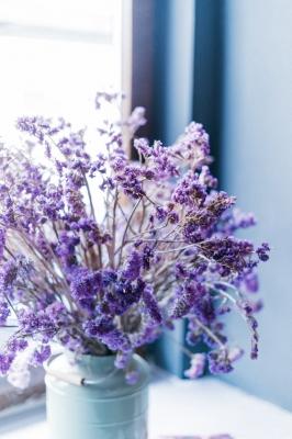 KISARAGI(キサラギ) 7月の香り
