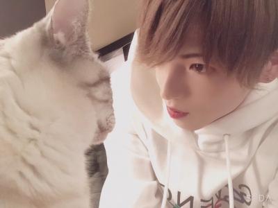OTOHA(オトハ) 音×猫